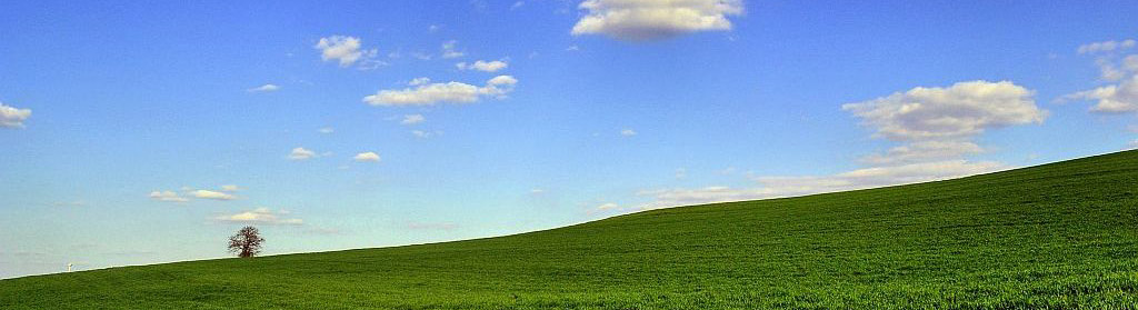 Bild ähnlich Windows XP